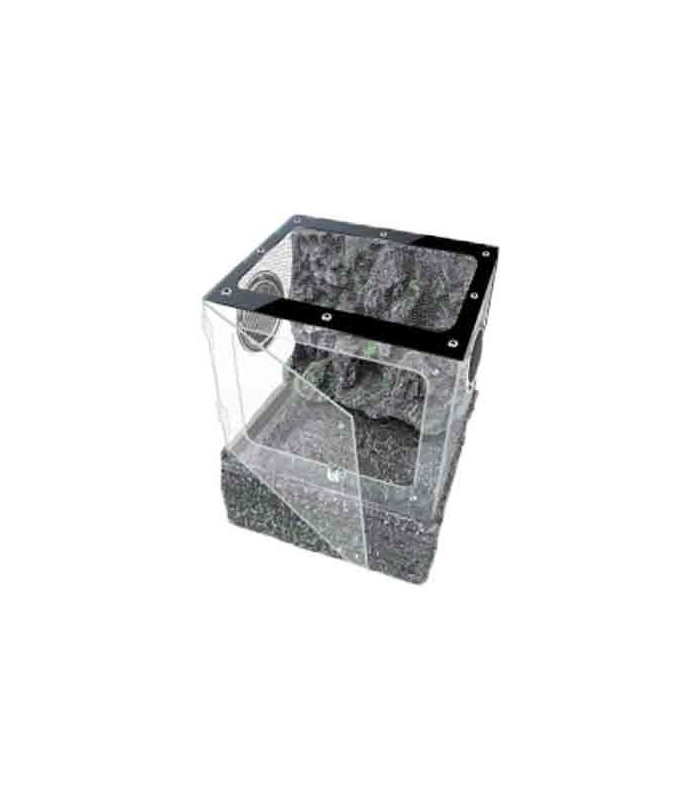 up tk pt 20g terrarium tank reptile amphibian habitat. Black Bedroom Furniture Sets. Home Design Ideas