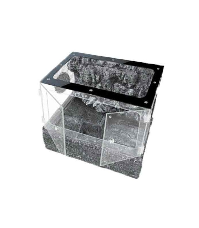 up tk pt 45pg terrarium tank reptile amphibian habitat. Black Bedroom Furniture Sets. Home Design Ideas
