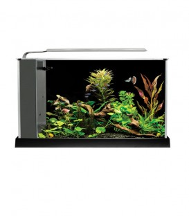 Fluval Spec V Desktop Aquarium Kit - Black