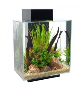 Fluval Edge 6-sided Aquarium Kit 46L - Black