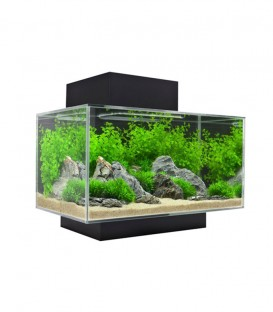 Fluval Edge Cube Aquarium Kit 23L 6gal - Black