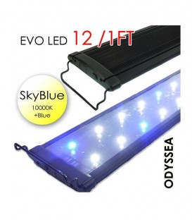 "Odyssea EVO LED 12"" 1ft 18W - Skyblue 10000K & Actinic Blue"