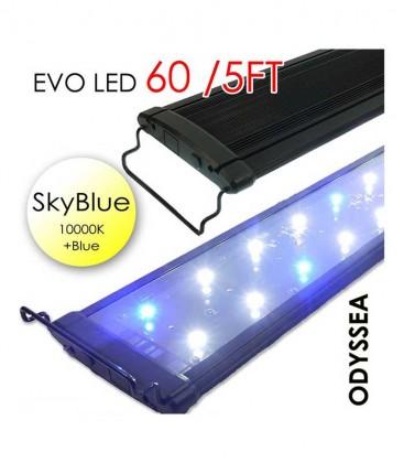 "Odyssea EVO LED 60"" 5ft 132W - Skyblue 10000K & Actinic Blue"