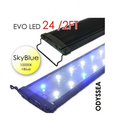 "Odyssea EVO LED light 24"" 2ft 48W - Skyblue 10000K & Actinic Blue"