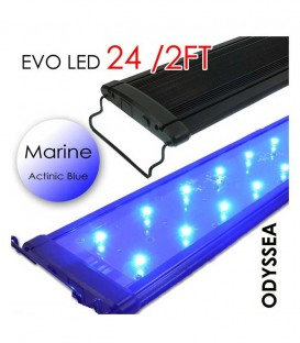 "Odyssea EVO All-Blue Marine LED Lighting - 24"" 2ft"