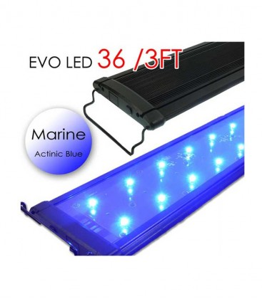 "Odyssea EVO All-Blue Marine LED Lighting - 36"" 3ft"