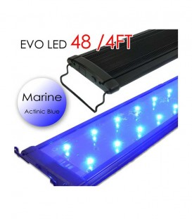 "Odyssea EVO All-Blue Marine LED Lighting - 48"" 4ft"