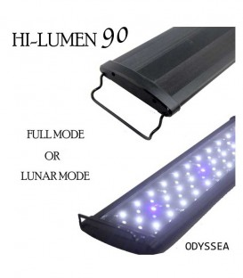 Odyssea Beamworks Hi-Lumen 90 LED Lighting