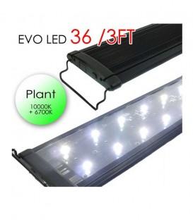 """Odyssea EVO LED Lighting 36"""" 3ft 72W - Plant 10000K 6700K lighting"""