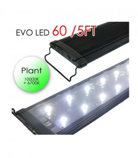 "Odyssea EVO LED Lighting 60"" 5ft 132W - Plant 10000K 6700K lighting"