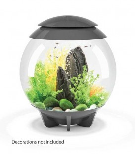biOrb Halo 30 MCR Spherical Aquarium (Grey)