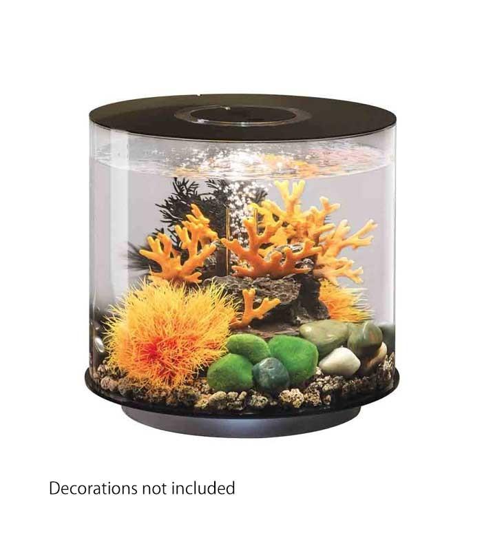 Biorb tube 15 mcr cylindrical aquarium black all round for Cylindrical fish tank