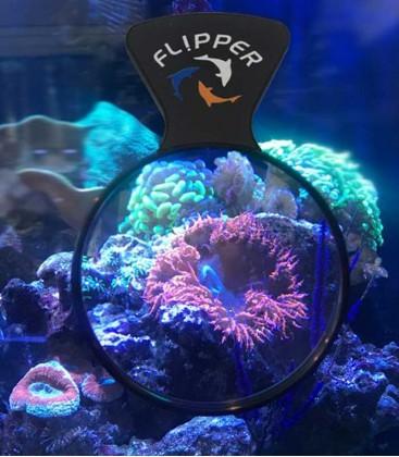 Flipper Deepsee Aquarium Magnifying Glass