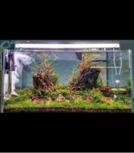 ANS Opti Tank Combo 90M with Twinstar LED 900E