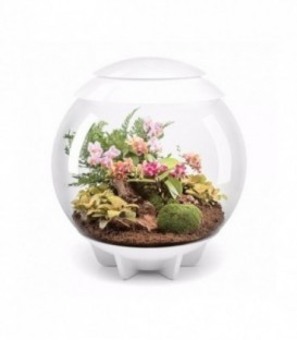biOrb Air 60 White Terrarium