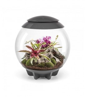 biOrb Air 60 Grey Terrarium