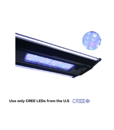 Zetlight QMaven II ZT-6600 Lighting