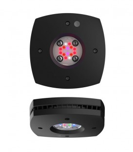 AI Prime 16HD Marine Reef Lighting (Black)