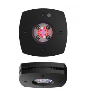 AI Prime 16HD Marine Reef Lighting (Black)