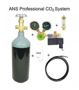 ANS 2L Professional CO2 System