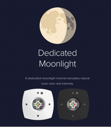 AI Prime Freshwater LED Lighting (Dedicated Moonlight)