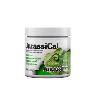 JurassiPet JurassiCal Dry 75g (SC-8014)