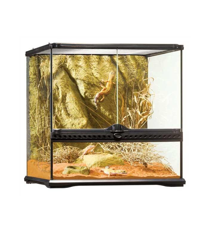 Exo Terra Pt2605 Glass Terrarium Reptile Amphibian Habitat