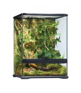Exo Terra PT2607 Glass Terrarium Small Tall reptile housing