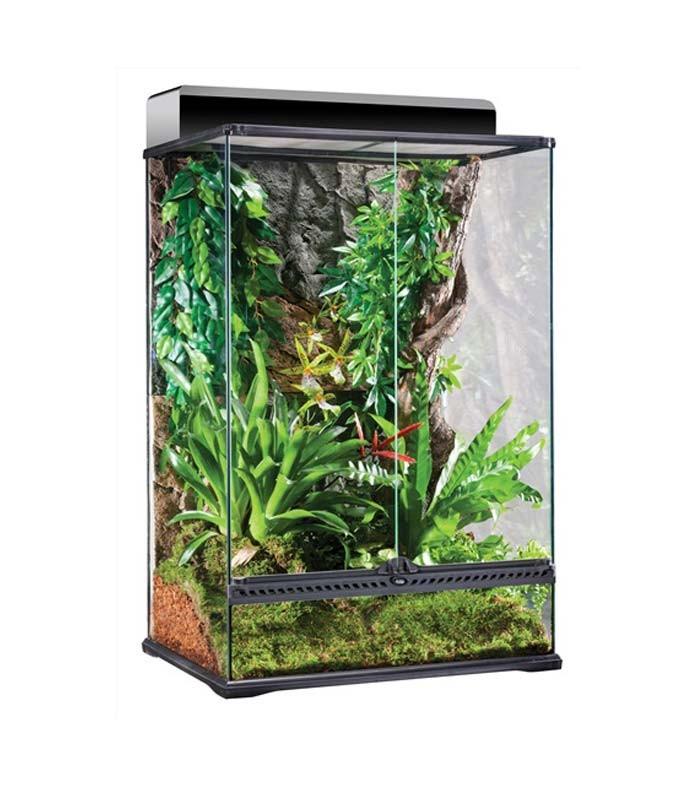 Exo Terra Pt2608 Glass Terrarium Reptile Housing Amphibian Habitat