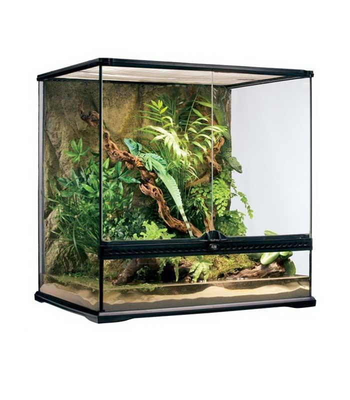 Exo Terra Pt2612 Glass Terrarium Reptile Housing Amphibian Habitat