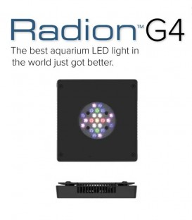 Radion XR15w G4 LED Lighting