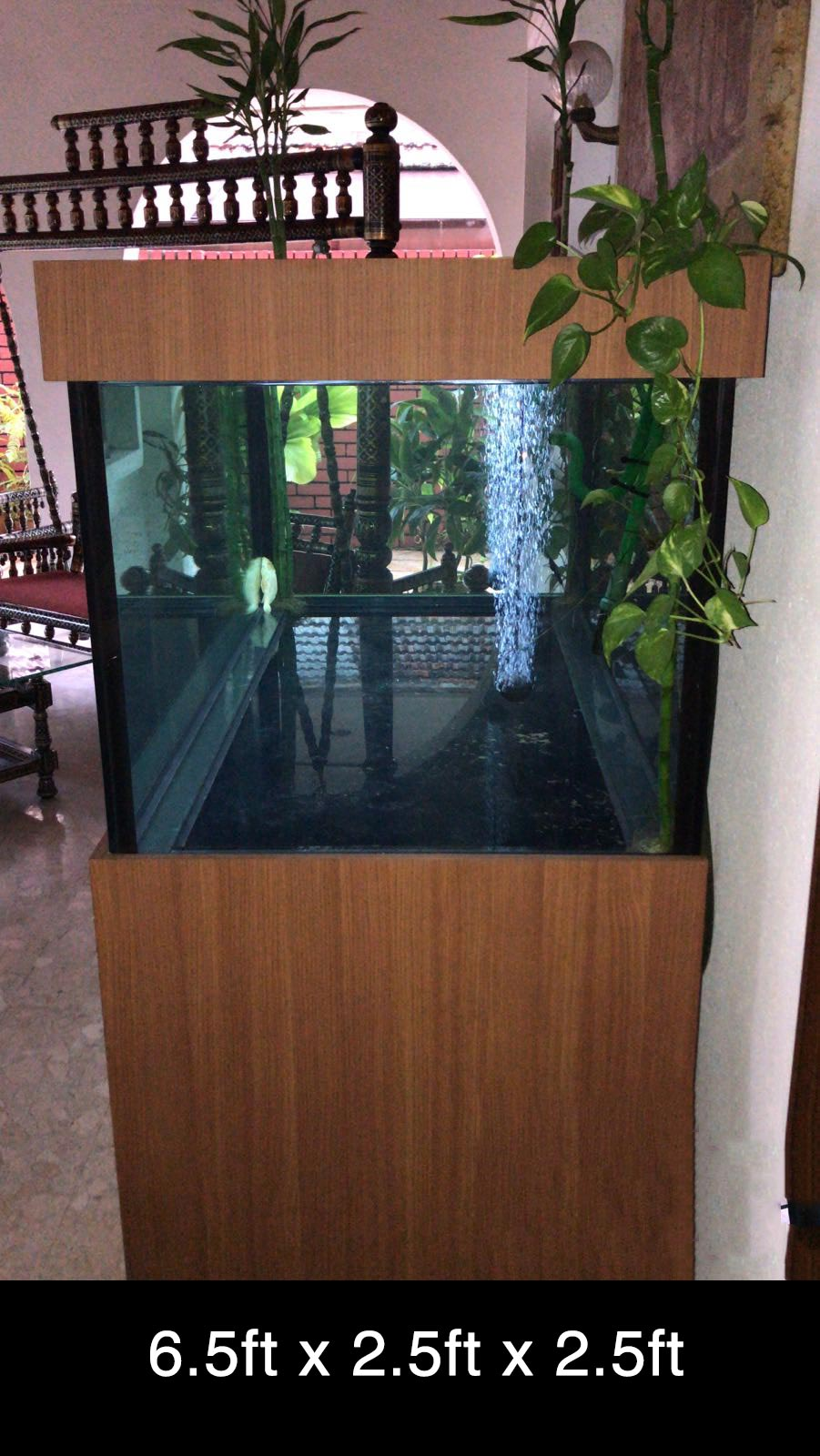 refurbished aquarium for sale as second hand