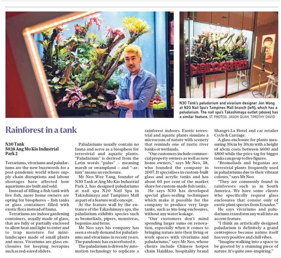 Straits Times article on N30 Tank paludarium