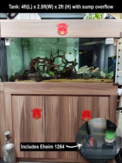 2nd hand aquarium cabinet sump overflow eheim 1264 pump