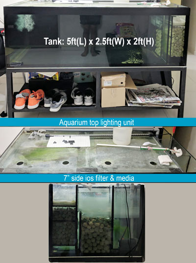 second hand 5ft tank set for sale