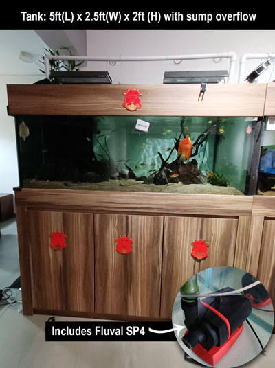 2nd hand aquarium cabinet sump overflow fluval sp4