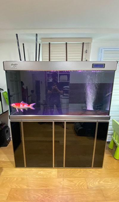 2nd hand aquarium oceanfree 5 feet fish tank cabinet overflow sump filter