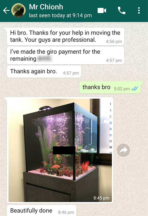 Customer feedbacks that N30 Tank did a beautiful job moving and relocating his fish tank.