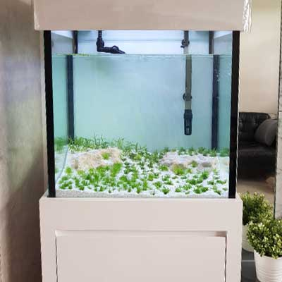 Customer reviews N30 custom made aquarium