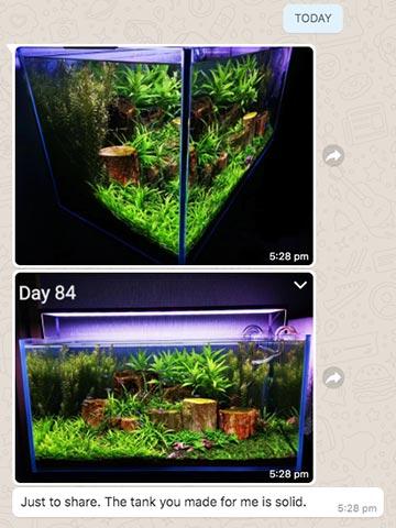 Aquarium - custom made by N30 for Singapore customer