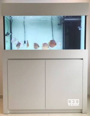 4FT-020 : N30 Discus Comm Tank 4-feet Cabinet Set with Overflow Sump
