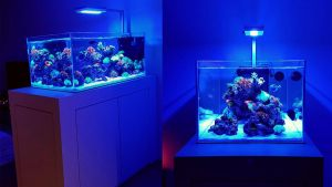 4FT-017 : N30 4-feet tank with AquaIllumination Hydra FiftyTwo™ HD (AI 52 HD) mounted on AI Single Arm Rail