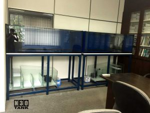 6ft-0001 6ft Arowana Comm Tank Set With Cabinet Tank Set on metal steel stands.