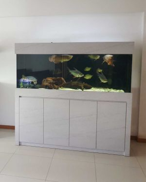 6FT-022: Arowana aquarium with cabinet wrapped in light-marble formica. Fully custom-made by N30 Tank.