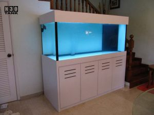 6ft-3 N30 Tank (close up of white cabinet aquarium set)