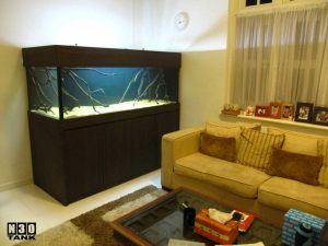 6ft-6 N30 Tank - Classic aquarium set neatly and snugly fitted in corner of living room, next to owner's sofa. The fish tank is a homely enjoyment.