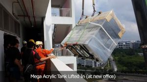 Mega Acrylic Tank Lifted In (at new office)