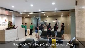acrylic-A4 : Mega Acrylic Tank Setup Completed (at new office)