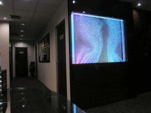 Acrylic Aquarium: Bubble Wall Tank
