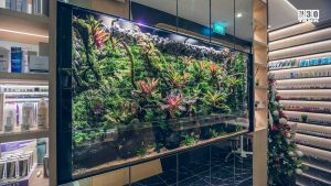 Aquarium with shelving on both sides in a high-end shopping mall. Entire aquarium and cabinets are custom-made by N30 Singapore.